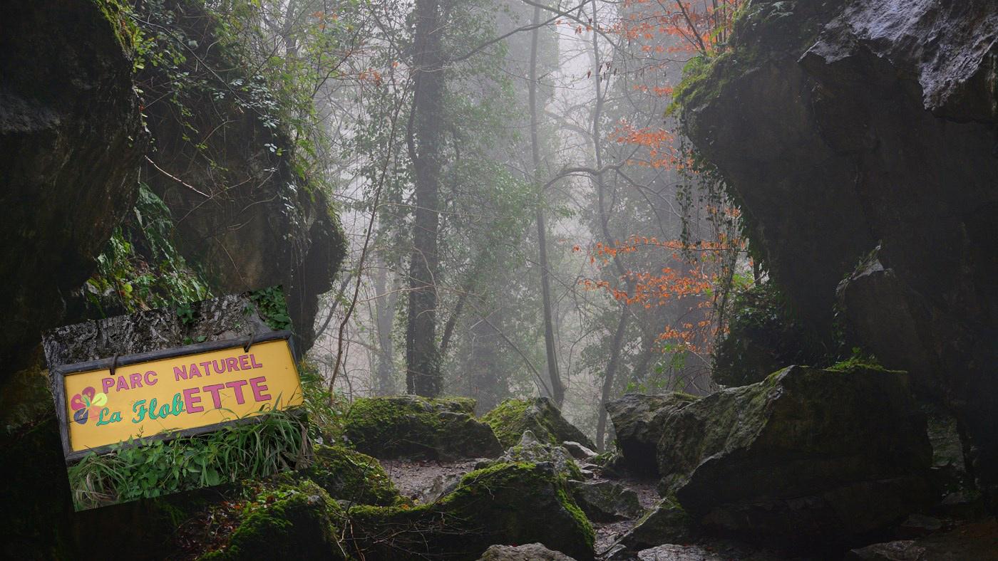 Au coeur de la réserve naturelle de Furfooz